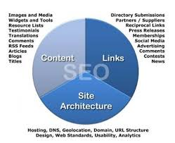 qualified SEO Experts in DC