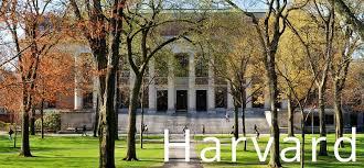 Harvard Business School Hbs Mba Mba Crystal Ball