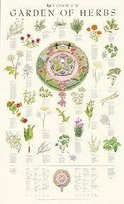 Small Picture 24 best herb garden images on Pinterest Herbs garden Garden