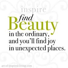 Unexpected Beauty Quotes Best of Finding Beauty In The Ordinary Inspirational Quotes