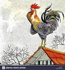 aesop s fabled chicken