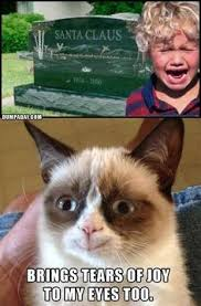 Grumpy cat on Pinterest | Grumpy Cat Meme, Meme and Grumpy Cat ... via Relatably.com