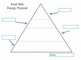 Blank Pyramid Diagram Unlabeled Blank Food Pyramid