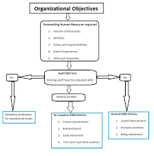 human resource planning hrp definition importance process  human resource planning process