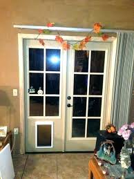 how to install a doggy door installing dog in glass post pet storm exterior petsafe how to install a doggy door