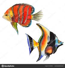 watercolor aquatic underwater colorful tropical fish set red sea and exotic fishes inside