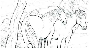 Horse Coloring Picture Free Printable Realistic Horse Coloring Pages
