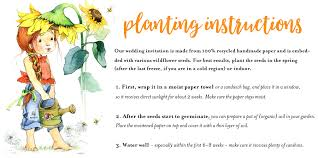 how to plant your seeded paper stationery to grow wildflowers or garden herbs