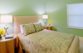 what color bedding goes with green