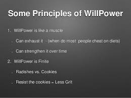 The Ironic Secret to Grit  What to do when Willpower Fails     Some Principles of WillPower