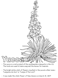 Small Picture courage yucca flower coloring page Little Flowers Ideas