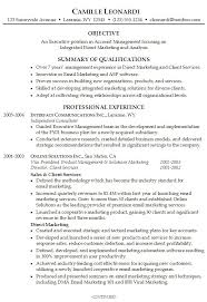 resume profile examples it professional profile examples for resumes