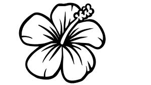 Images Of Cute Flower Drawings Flowers Healthy