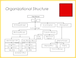 Org Structure Template Company Organization Word Chart Free