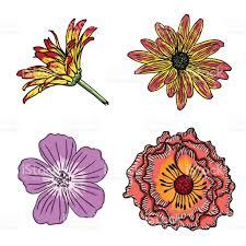 Fleur D T D Fini Collection Dans Des Couleurs Lumineuses Et De