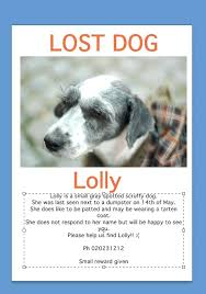 Lost Dog Flyer Template Missing Pet Poster Uk Free