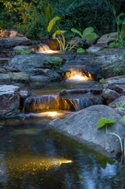 Backyard Ponds 17 Best Backyard Ponds Images On Pinterest Landscaping Backyard