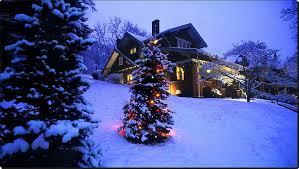 christmas tree lights snow night