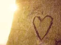 7 Gründe Warum Wir Nie Den Glauben An Die Liebe Verlieren Dürfen