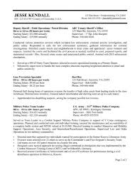 Federal Resume Templates Format Of Federal Government Resume