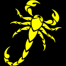 Image result for yellow scorpion very yellow