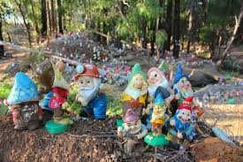 thousands of gnomes will have to be relocated after plaints from nearby property owners abc news gian de poloni