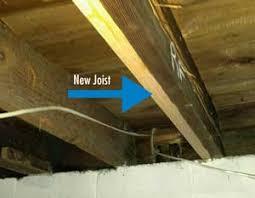 cowleys termite damage repair services