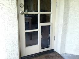 pet door for wall solo automatic opening mount install through brick
