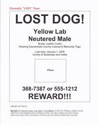 lost found pets benldadoptapet sample flyer