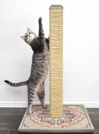 diy cat scratching post for couch page