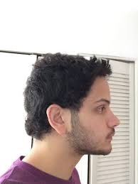What Hair Style Should I Get have some frizzy and jewfro prone hair how should i get it cut 7597 by wearticles.com