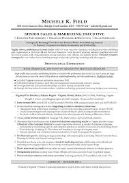Sales Resume Adorable Regional VP Sales Sample Resume Executive Resume Writing Sales