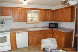 Home Depot Kitchen Remodeling Kitchen Cabinet Stain Colors Home Depot Photo 5 Lowes Kitchen
