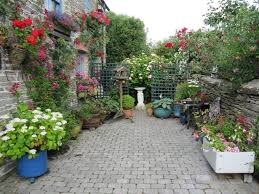 Small Picture plant privacy fence ideas Urban Garden Ideas Garden