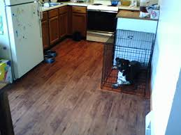 Kitchen Floors Vinyl Vinyl Plank Flooring Kitchen Droptom