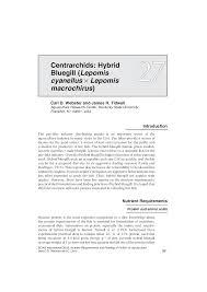 Nut Ais 27 Centrarchids Hybrid Bluegill Lepomis