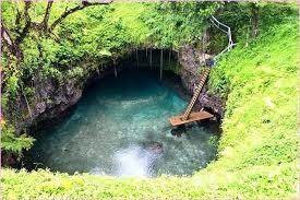 natural swimming pool images of pools diy small backyard