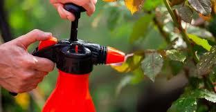 7 best garden sprayer in 2021 manual