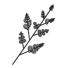モノクロでかわいい萩の無料イラスト商用フリー オイデ43