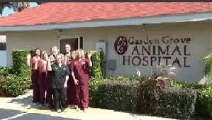 garden grove animal hospital.  Hospital Garden Grove Animal Hospital To A