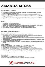Combination Resume Formats Latest Resume Format 2019 Best Resume 2019