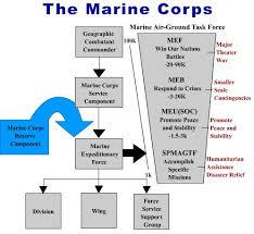 Usmc Chain Of Command Chart Marine Corps Rank Structure Essay College Paper Example