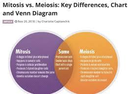 Venn Diagram Meiosis And Mitosis Meiosis Jonathans Classroom
