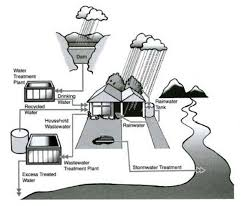 ielts task the circulation of rainwater in the environment