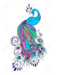 Peacock Design Pictures Colorful Fashion Card With Peacock Color Bird For The Design