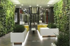 1000 Images About Office Plants On Pinterest  Plants Spaces And Productivity  N