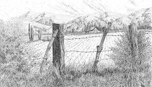 farm fence drawing. Landscape Drawing - Through The Fence By David King Farm F