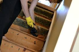 carpet on stairs. how to remove carpet from stairs and paint them on t
