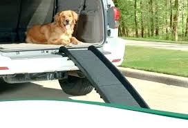 dog door ramp outdoor pet car side ramps for doors australia build pet step graphite ramp