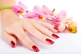 Image result for hand beauty pictures